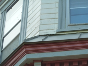 Swarm in siding 1