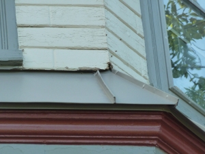 Swarm in siding 2