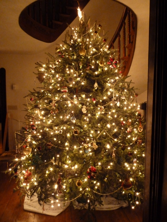 I took so few Christmas tree pics this year that I'm resorting to showing you one with a shower curtain sticking out from below it. (Makes for a practical tree skirt!)