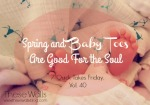 These Walls - Spring and Baby Toes Are Good For the Soul (7QT40)