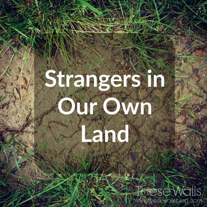These Walls - Strangers in Our Own Land