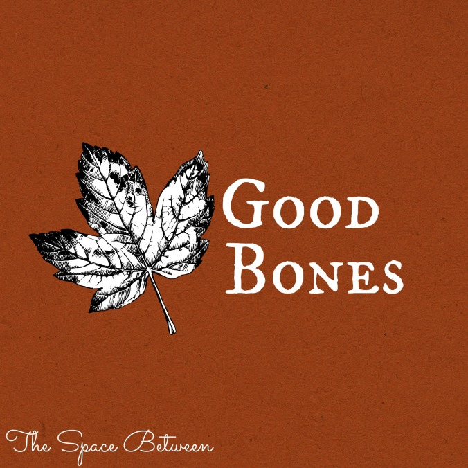 the-space-between-good-bones