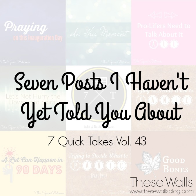these-walls-7-posts-i-havent-yet-told-you-about-7qt43